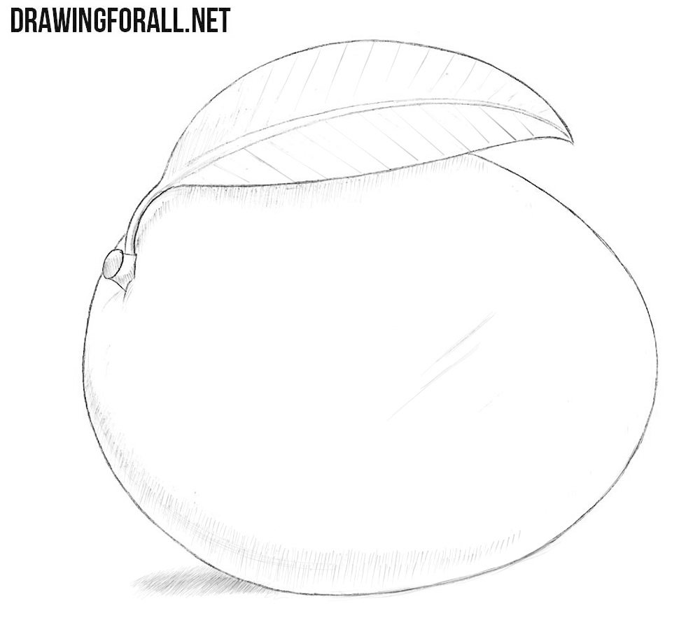 How To Draw A Mango Drawingforall Net