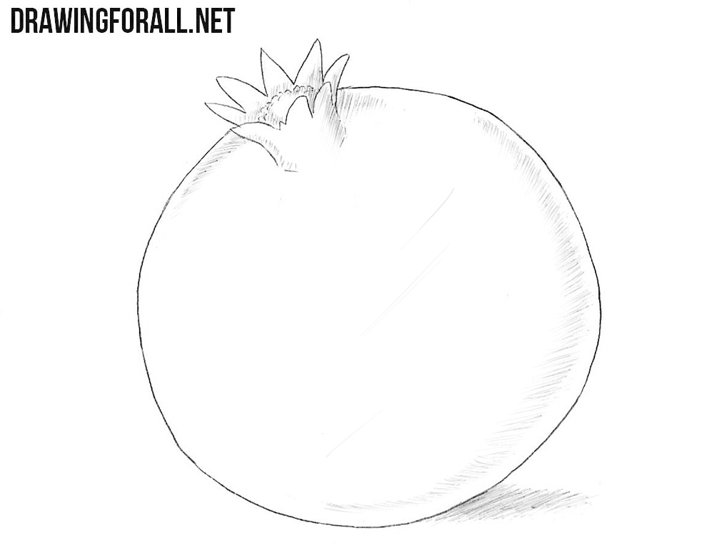 How to draw a pomegranateHow to draw a pomegranate
