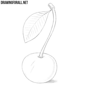 How to Draw a Wild Cherry
