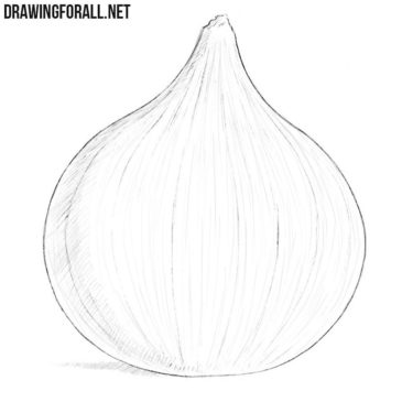 How to Draw an Onion
