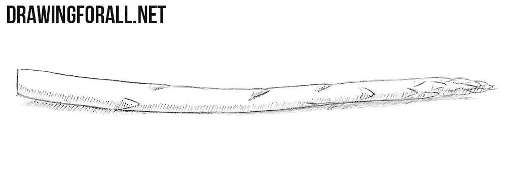 Asparagus drawing