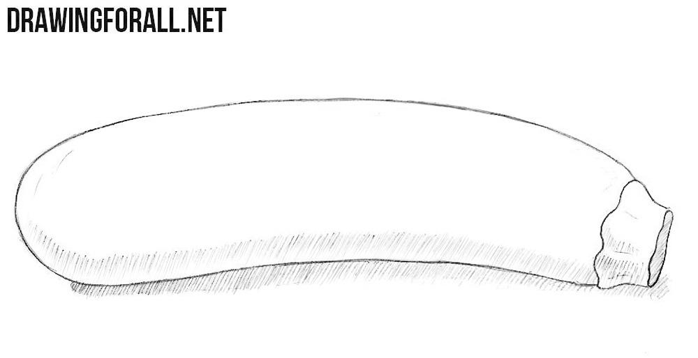 Zucchini drawing