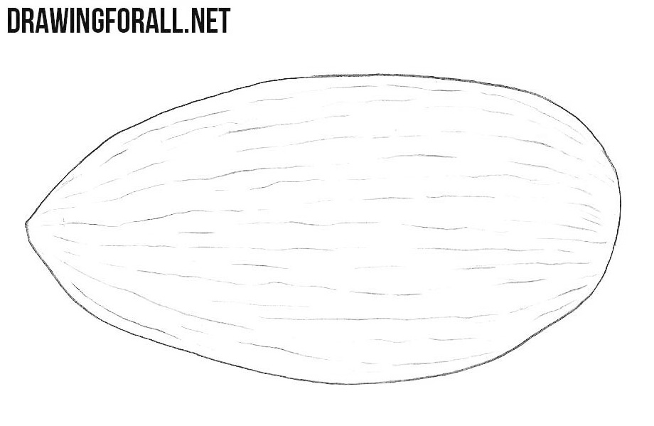 How to draw an almond easy