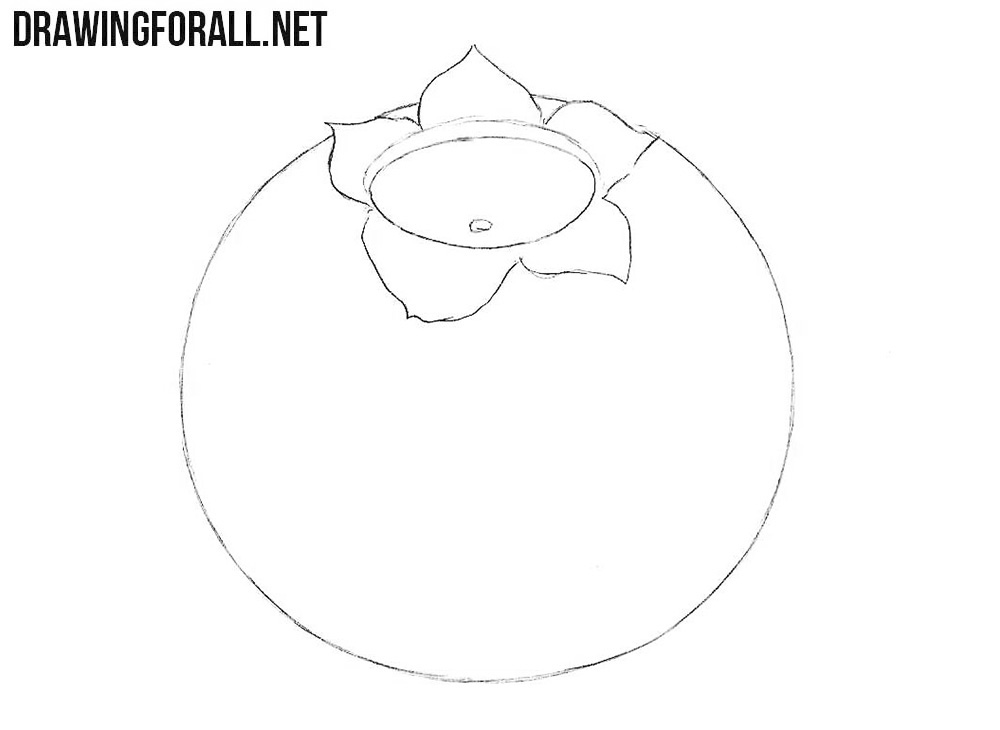 How to draw a blueberry fruit