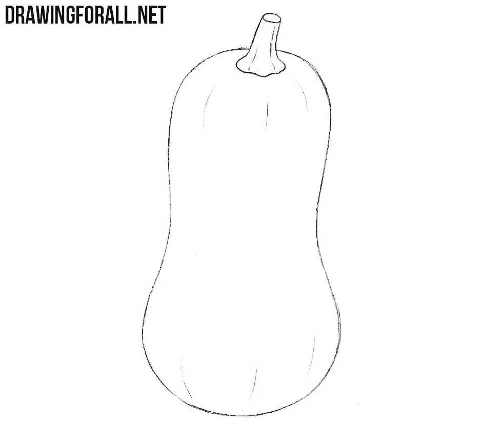 How to draw a squash easy