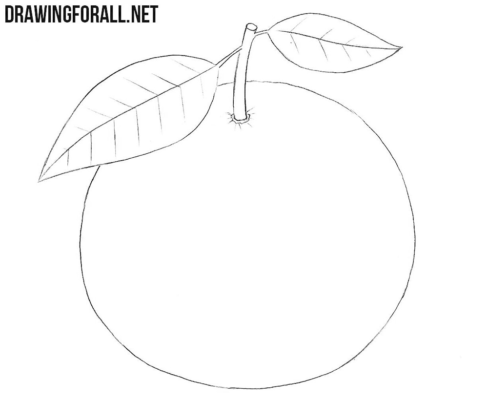 Mandarin drawing tutorial