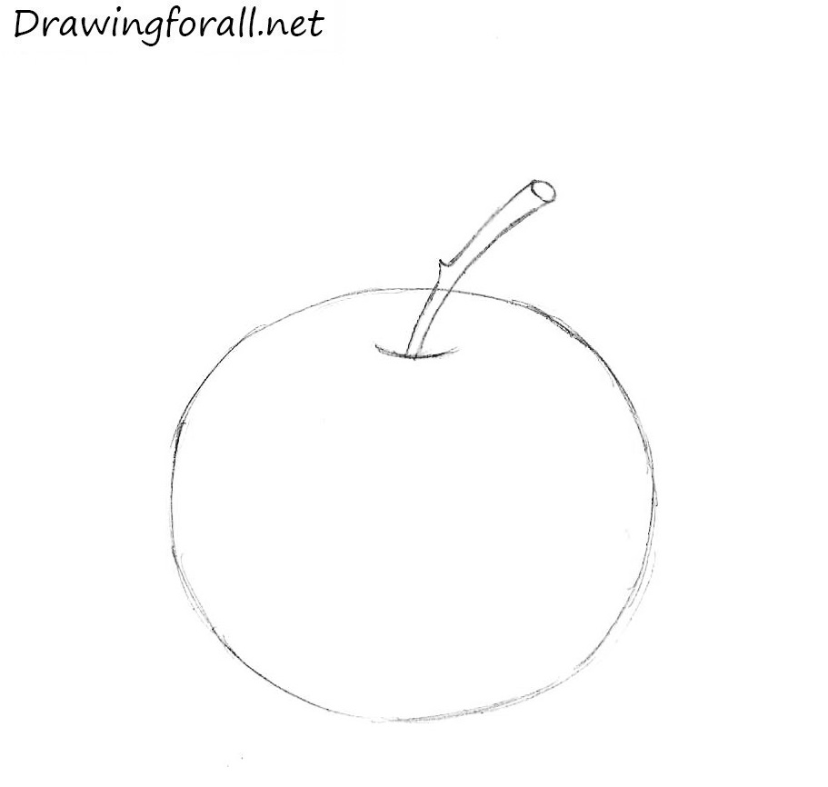 How to Draw an Apple for Beginners step by step