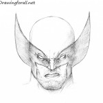 How to Draw Wolverine's Head