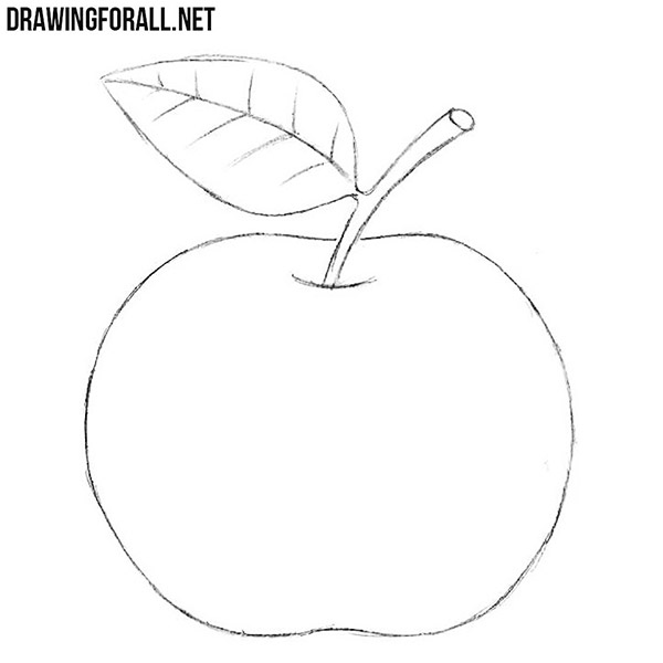 How to Draw an Apple for Beginners | Drawingforall net