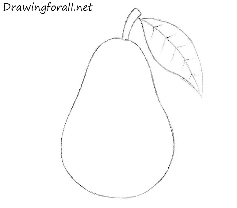 How To Draw A Pear For Beginners Drawingforall Net