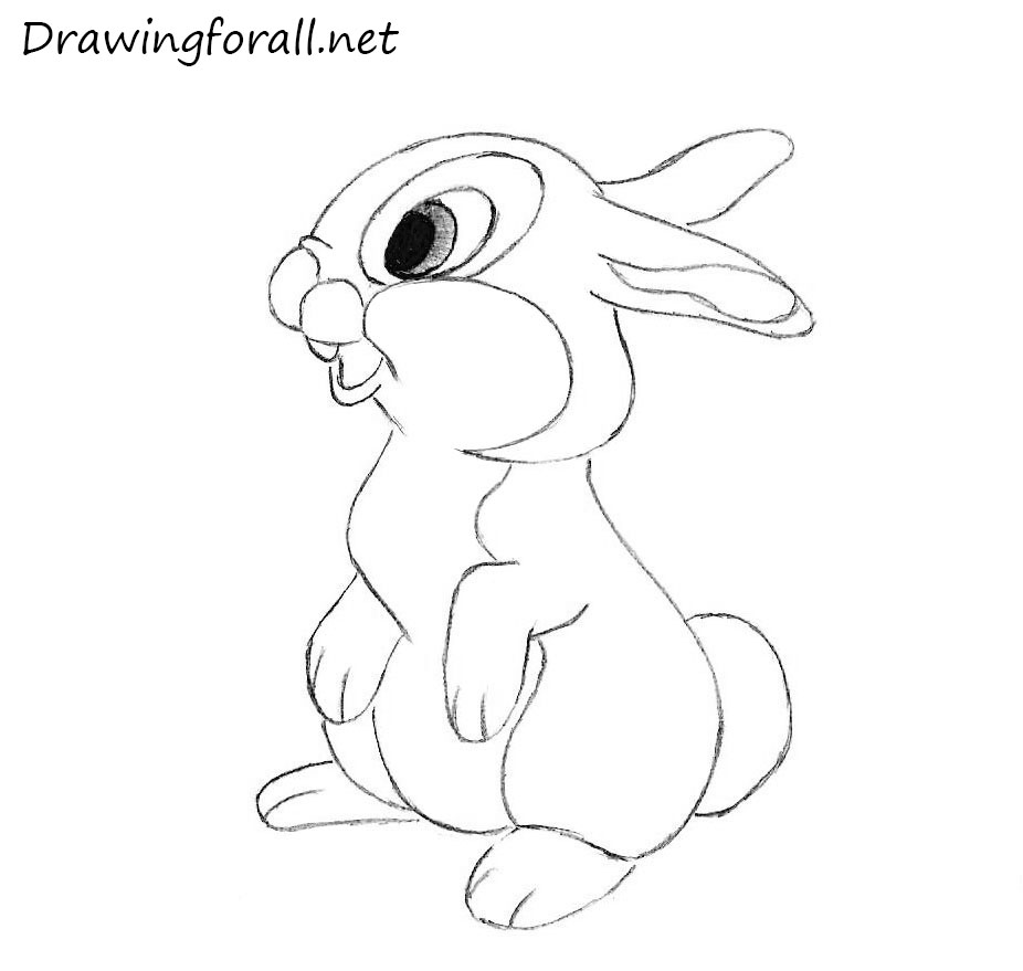 How to Draw a Rabbit for Kids | Drawingforall.net
