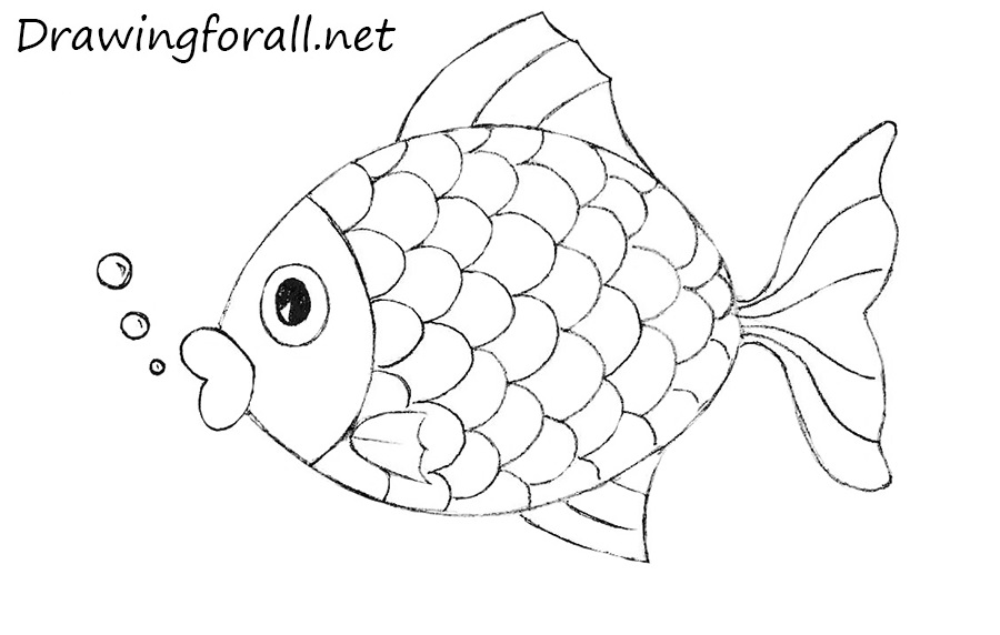 how to draw a fish for kids drawingforallnet
