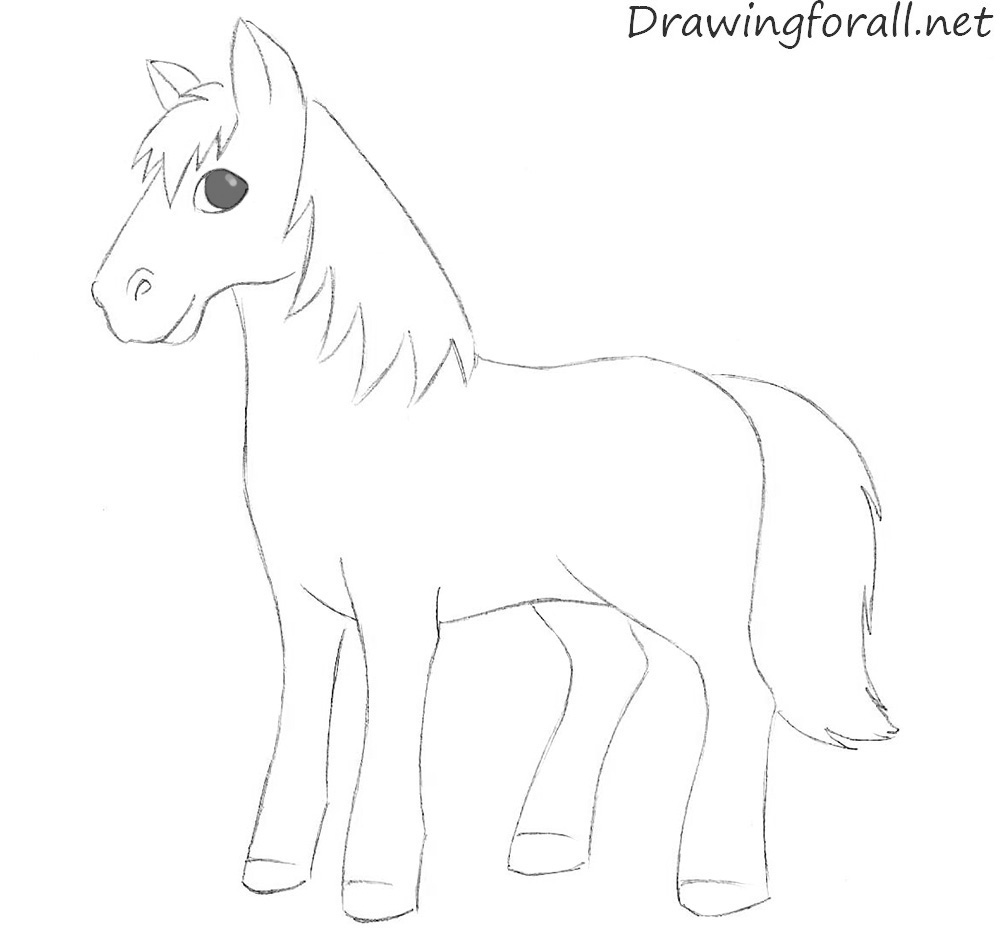 How To Draw A Cartoon Horse Drawingforall Net