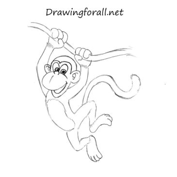 How to Draw a Monkey for Kids