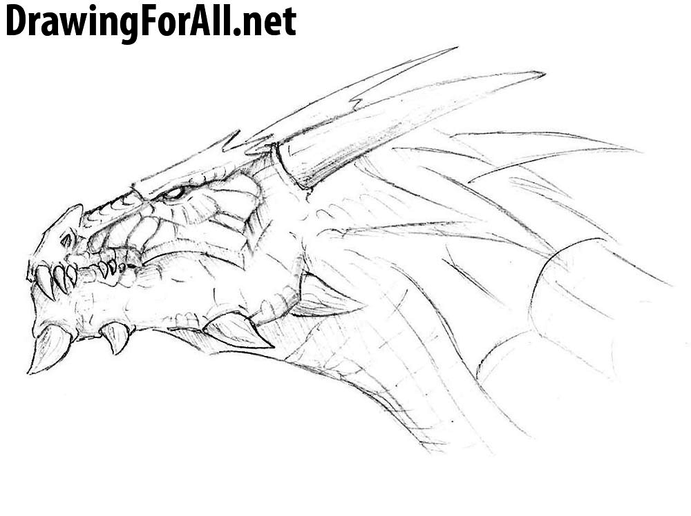 How To Draw A Dragon Head Drawingforall Net