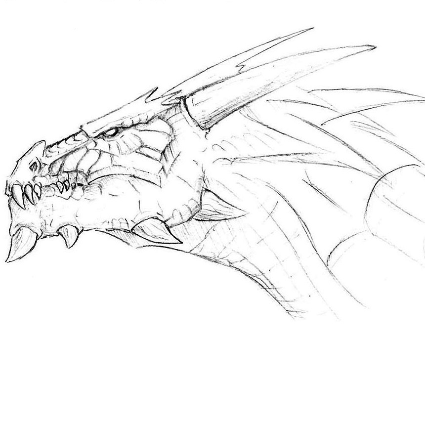How to Draw a Dragon Head | Drawingforall.net