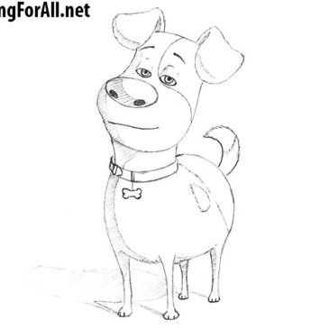 How to Draw Max from The Secret Life of Pets