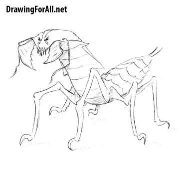 How to Draw an Ankheg