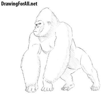 How to Draw King Kong
