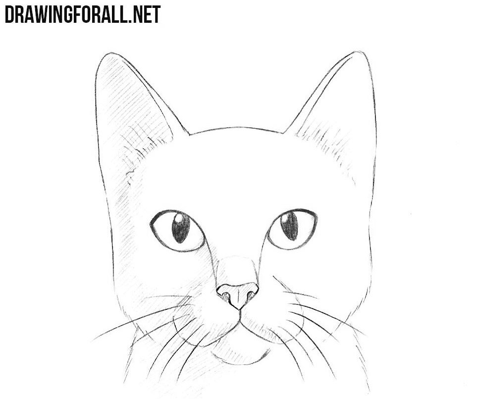 This is a picture of Epic Drawing Cat Face