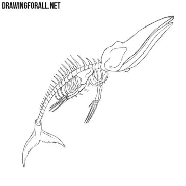 How to Draw a Bake-Kujira