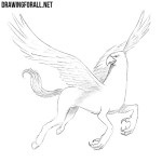 How to Draw a Hippogriff