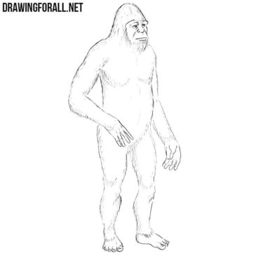 How to Draw the Yeti Step by Step