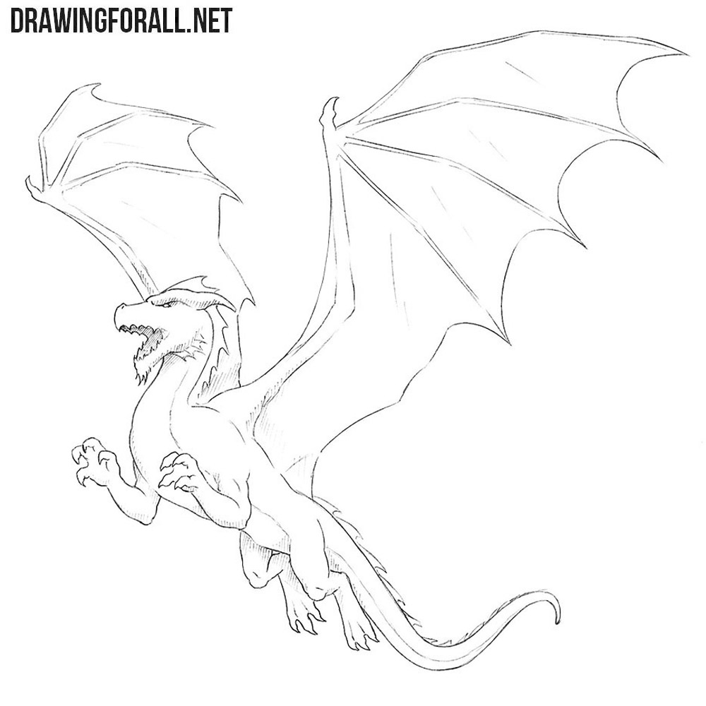 How To Draw A Dragon For Beginners Drawingforall Net