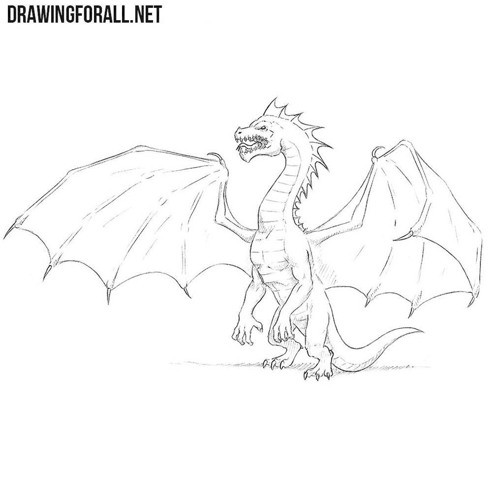 How to Draw a Dragon Step by Step   Drawingforall.net