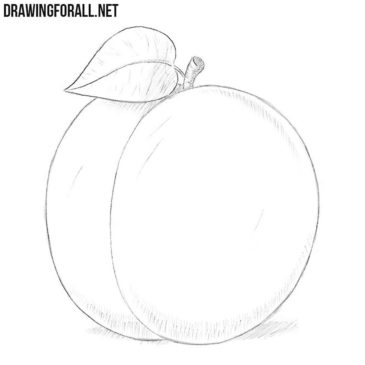 How to Draw a Plum