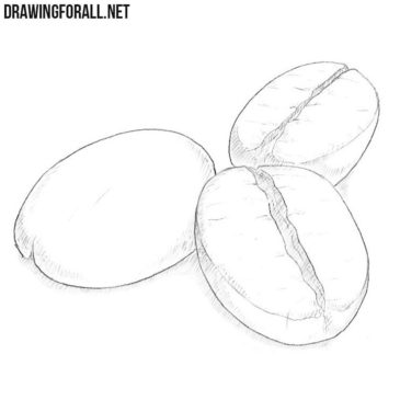 How to Draw Coffee Beans