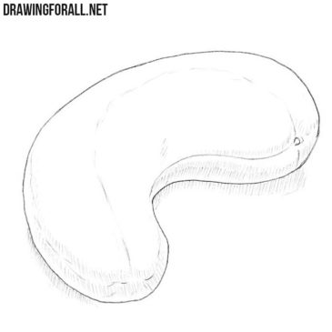 How to Draw a Cashew