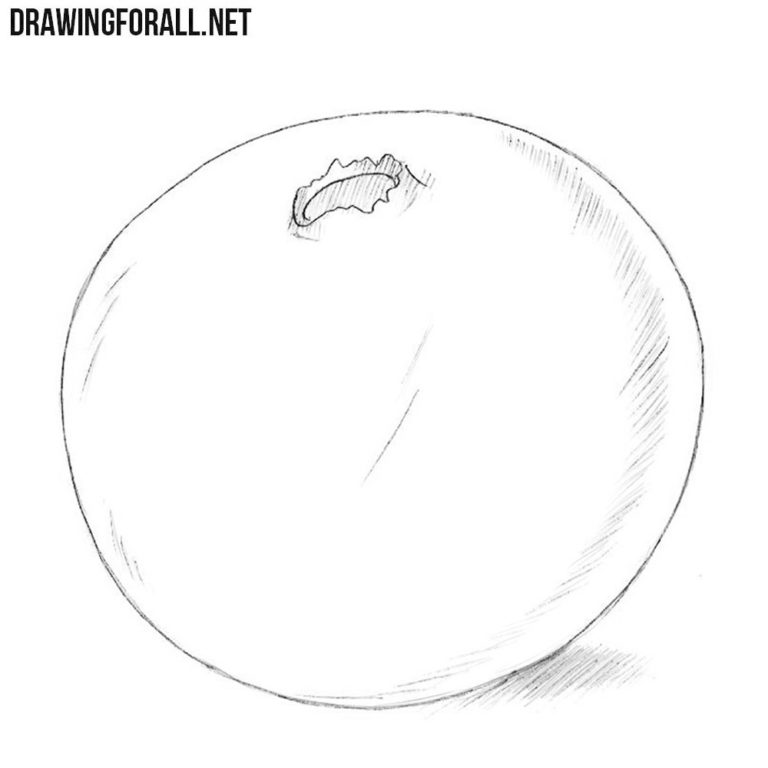 How to Draw a Cranberry