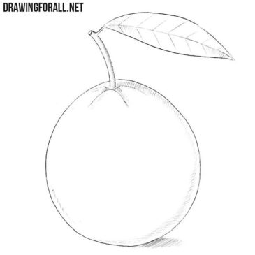 How to Draw a Guava