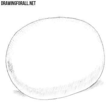 How to Draw a Kiwi