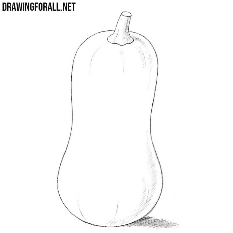 How to Draw a Squash