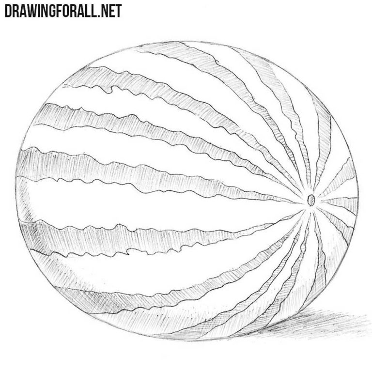 How to Draw a Watermelon
