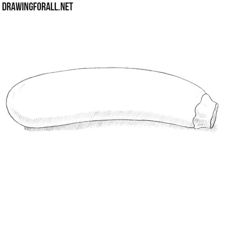 How to Draw a Zucchini