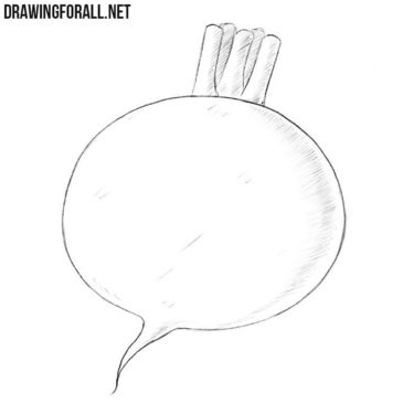 How to Draw a Turnip