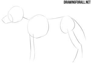 How to draw an anime an manga