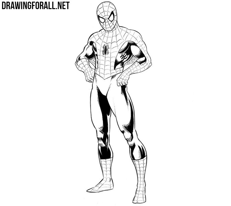How To Draw Spider Man Step By Step Drawingforall Net
