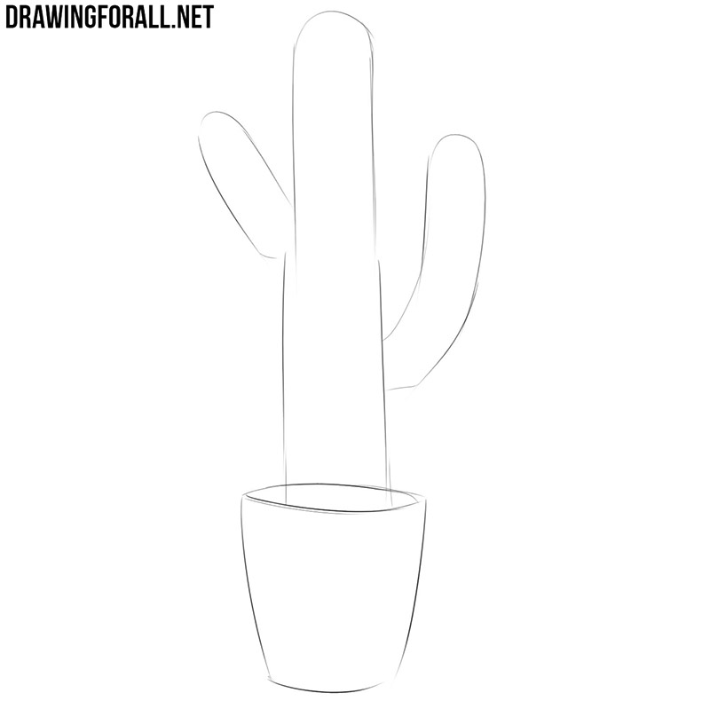 How to draw a cactus plant