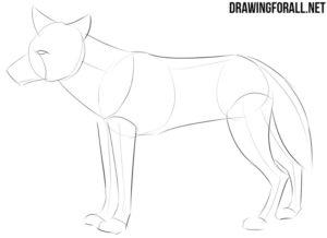How to draw a manga animal