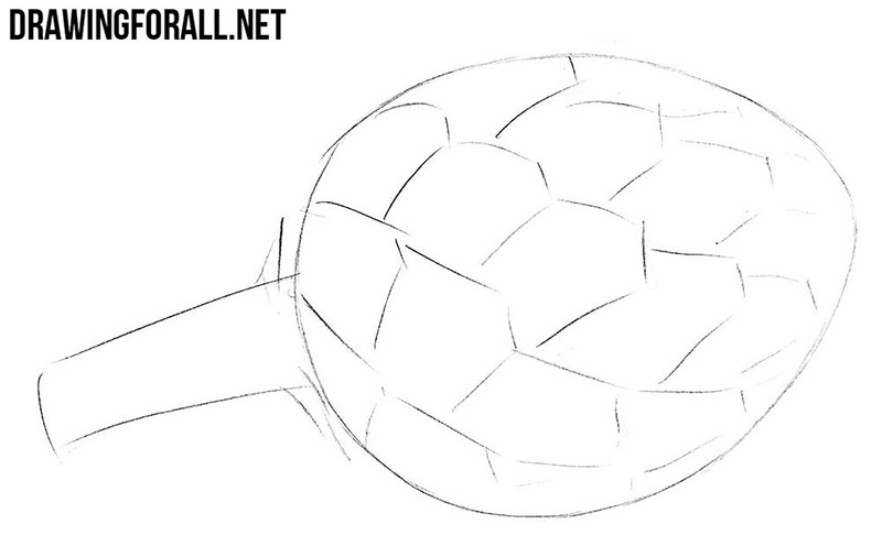 How to draw an artichoke step by step