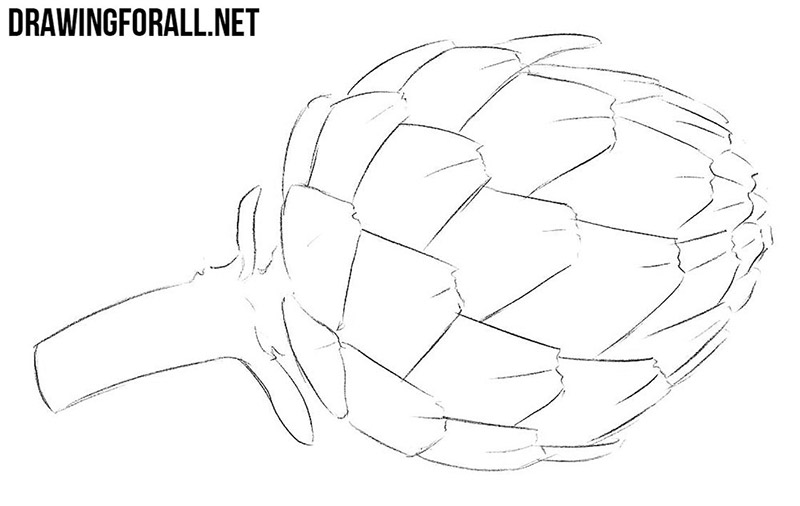 How to draw an artichoke easy