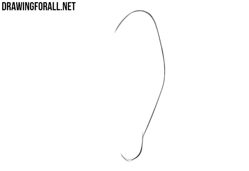 How to draw anime ears step by step