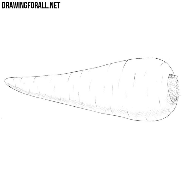 How to Draw a Vegetable