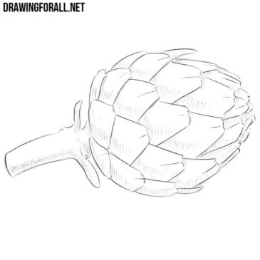 How to Draw an Artichoke