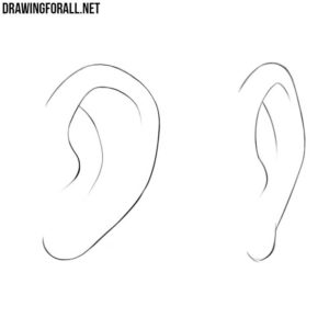 How to draw anime ears