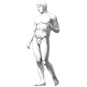 human body proportions in art